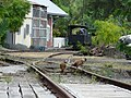 Coq sur les voies de la gare - panoramio.jpg