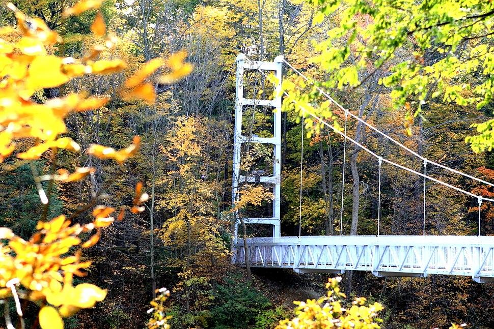 Cornell footbridge