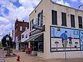 Corner of Byrd Drugs in downtown Troy.jpg