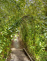 Corridor (8042579214).jpg