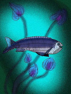 Anaspida - Cowielepis