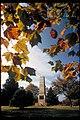 Cowpens National Battlefield, South Carolina (6670904a-e456-40a9-b0a6-2cf72adf5ae5).jpg