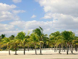 Geography of Florida - Crandon Park in Key Biscayne