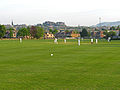 Cricket at Ferry Road (5797191253).jpg