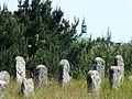 Culture Trail - Kirkut in Kierkow - Gmina Zarki Powiat Myszkowski 6 -.JPG