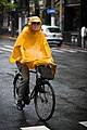 Cyclist wearing a yellow rain poncho in Shanghai, China -- June 2011.jpg