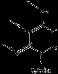 Cytonum2.png