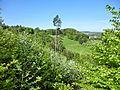 D-BW-BL-Albstadt - Naturschutzgebiet 'Leimen' 001.jpg