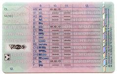 Germany Licence 2013 Back.