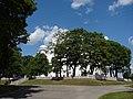 Dagdas Vissvētās Trīsvienības Romas katoļu baznīca (1741 fin. Jans Augusts Hilzens), Alejas iela 2, Dagda, Dagdas novads, Latvia - panoramio - M.Strīķis (1).jpg
