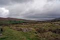 Dartmoor (2763497170).jpg