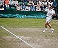 David Ferrer - 2011 Wimbledon(3).jpg