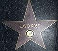 David Rose star HWF.JPG