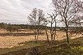 De Loenermark 004.jpg