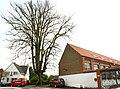 De Zeven-Sacramentenboom , opgaande linde - 375805 - onroerenderfgoed.jpg