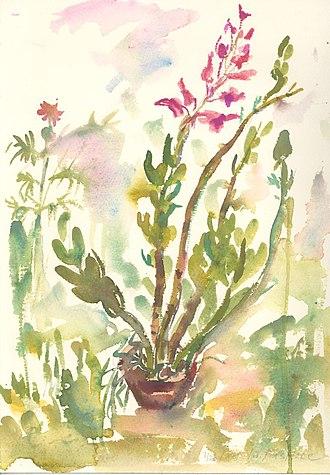 Dendrobium - Image: Dendrobium Orchid