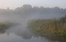 Desna river Vinn meadow 2016 G9.jpg