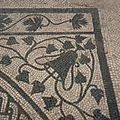 Dettaglio mosaico pavimento.jpeg