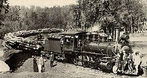 Deweyville, Texas - Logging train at Deweyville Plant of Sabine Tram Company