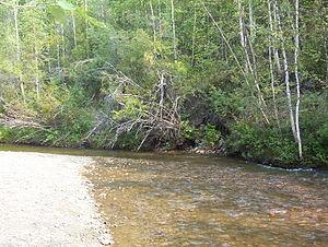 Bonanza Creek - Image: Discovery Claim at Bonanza Creek (2)