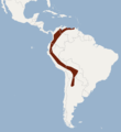 Distribution of Sturnira erythromos.png
