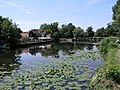 Dobb's Weir, Nazeing. - geograph.org.uk - 26831.jpg