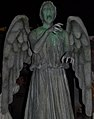 Don't blink! (3132292275) (cropped).jpg
