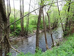 Dragovishtitsa-river-between-Dolno-Uyno-and-Goranovtsi-3.jpg