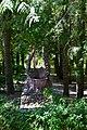 Dubechne Starovyzhivskyi Volynska-Dubechnivskyi park architecture monument-alley-1.jpg