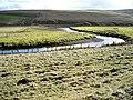 Duneaton Water - geograph.org.uk - 342394.jpg
