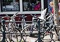 DutchPhotoWalk Amsterdam - panoramio (26).jpg