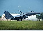Eagles, Falcons soar over Aviano skies 150603-F-FK724-095.jpg