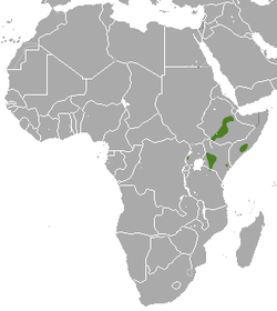 East African Epauletted Fruit Bat area.png