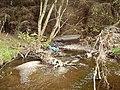 Eddleston Water - geograph.org.uk - 165149.jpg
