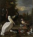 Een pelikaan en ander gevogelte bij een waterbassin, bekend als 'Het drijvend veertje' Rijksmuseum SK-A-175.jpeg