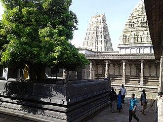 Ekambareswarar Temple (Kanchipuram) - Stucco image of the legend of Mango tree and the Mango tree behind the sanctum