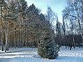 Ekaterinburg winter - panoramio.jpg