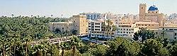 Elx panoramica.jpg