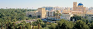 Palmeral of Elche - Panoramic view of Elche, showing the palm trees within the city.