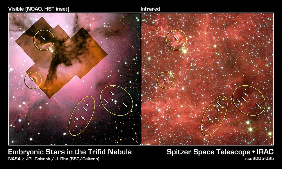 Embryonic Stars in the Trifid Nebula
