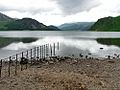 Ennerdale Water, Bowness Knott and Anglers Crag - geograph.org.uk - 31627.jpg