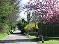 Entering Eastry on Woodnesborough Lane - geograph.org.uk - 406988.jpg