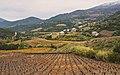Escagnès (hameau), Roquebrun 02.jpg