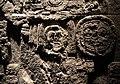 Estela 89 de Calakmul (detall), museu d'Antropologia Rautenstrauch-Joest.jpg