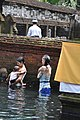 Every day at Pura Tirta Empul.JPG