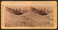 Evolution of sickle and flail, 33 horse team harvester, cutting, threshing and sacking wheat, Walla Walla, Washington, from Robert N. Dennis collection of stereoscopic views 4.png