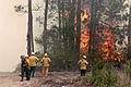 FEMA - 29932 - Firefighters Watch Raging Fire.jpg
