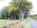Falfield Junction - geograph.org.uk - 80069.jpg