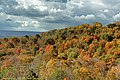 Fall Foliage in Johnstown Region - panoramio (9).jpg
