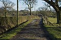 Farm road to Bannister Hey - geograph.org.uk - 1702035.jpg